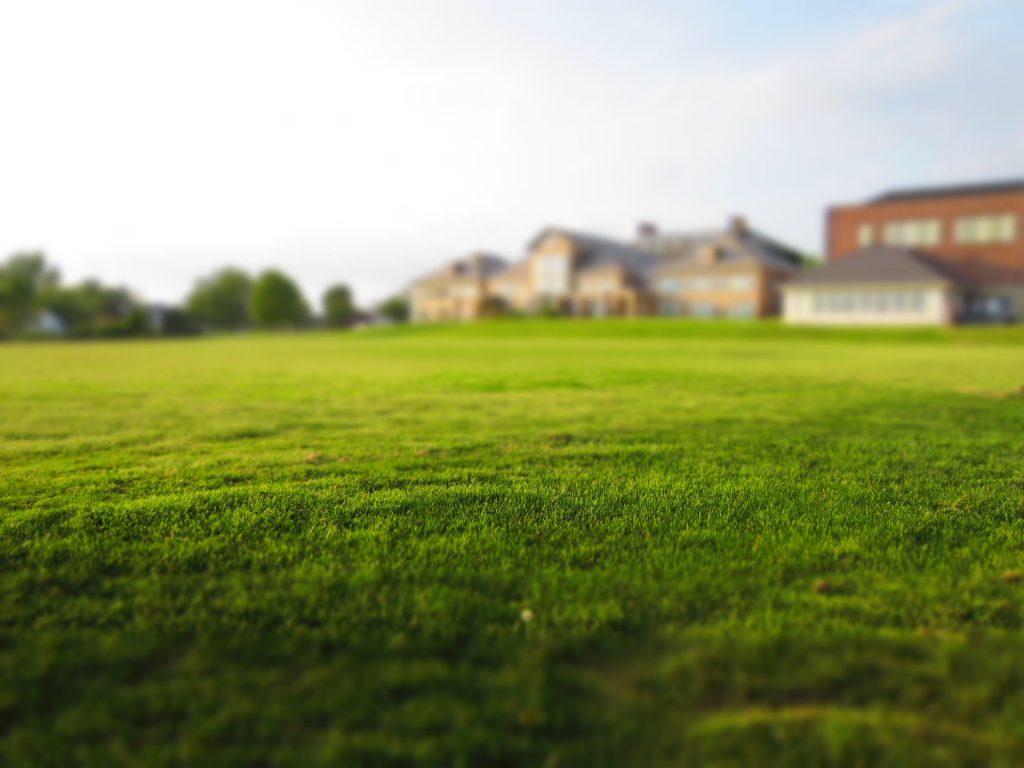 3 Tips waar je nog niet aan gedacht had voor het aanleggen van graszoden